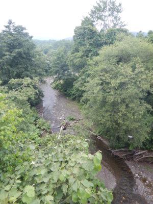 中の川支流 コウエイ川