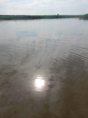 茶色い川に映る太陽