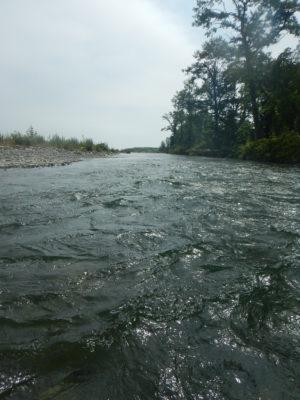 歴舟川 澄んだ水