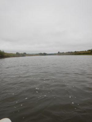 平らな川面