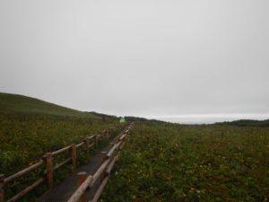 桃岩から元地灯台まで-2