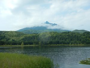 オタトマリ沼からの利尻山
