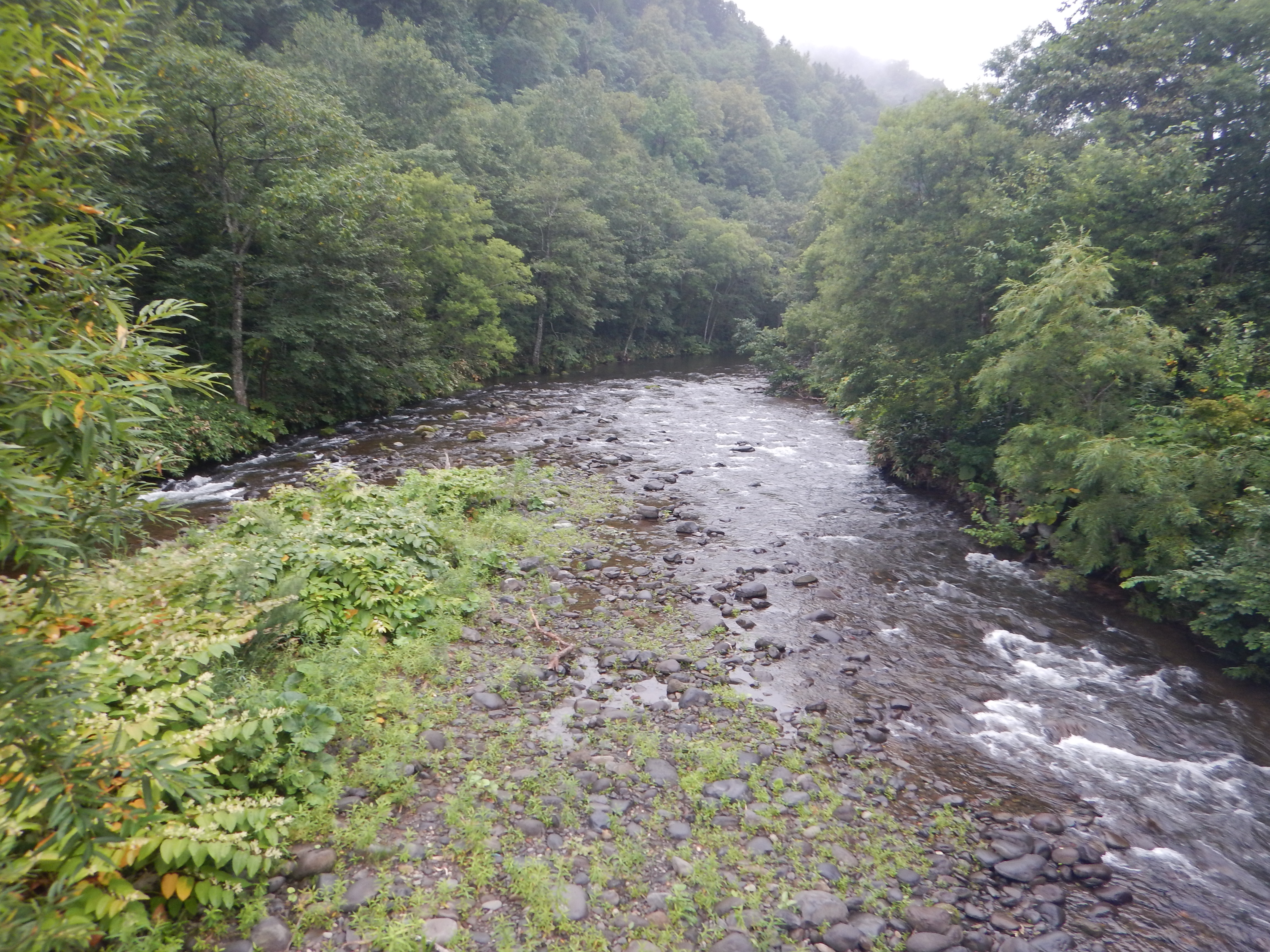 徳志別川上流5