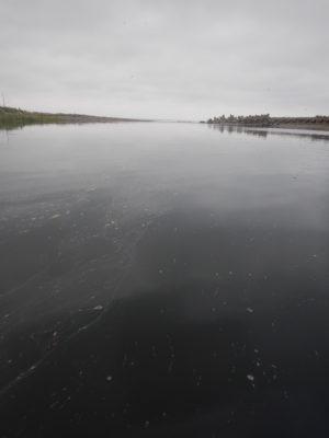 徳志別川 河口